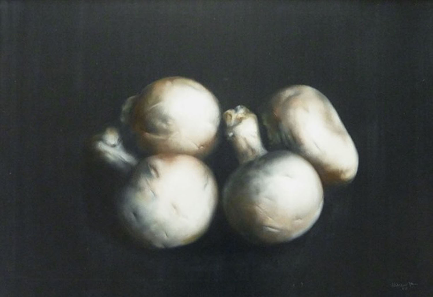 Champignon de Paris, 1982, oil on canvas, cm 81 x 116